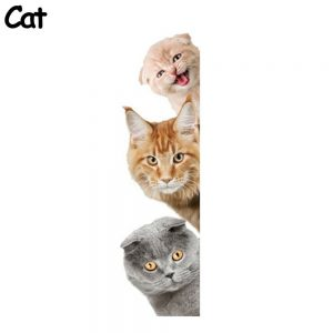 decal 3 cats