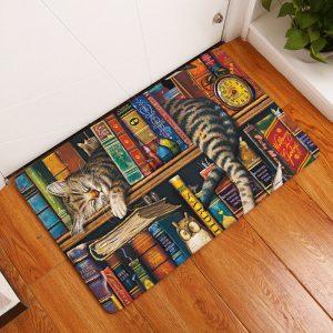mat asleep on bookshelf